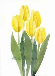 colors close to yellow yellow tulip bunch 4 original watercolor by wandazuchowskischick