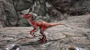 ark survival evolved raptor survival evolved com