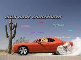 Best Doge Memes - best of the doge meme 15 pics meme collection