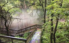 Florida waterfalls images 7 best waterfall hikes in florida to see a ghost jpg