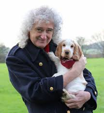 queen guitarist brian may u0027s vip visit to hearing dogs for deaf