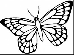 superb hard butterfly coloring pages with butterfly coloring pages