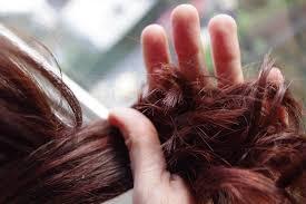 light mountain natural hair color black appealing natural hair color light mountain review how we flourish