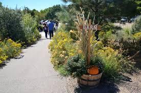 Denver Botanic Gardens Corn Maze Photos Getting Lost In The 2016 Chatfield Corn Maze Westword