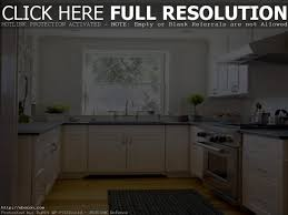 Inexpensive Kitchen Remodeling Ideas by Small Kitchen Remodeling Ideas On A Budget Pictures Clever Kitchen