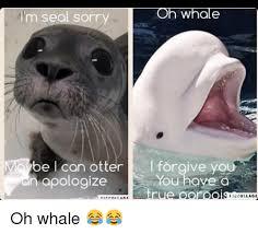 Otter Meme - 25 best memes about otter meme otter memes