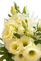 wedding flowers for october october wedding flowers lovetoknow