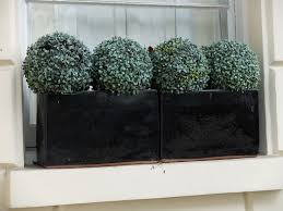 Topiary Planters - 730 best window boxes and planters images on pinterest window