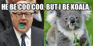 Koala Meme - meme maker george brandis the koala generator