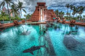 leap of faith u0027 the atlantis resort paradise island bahamas