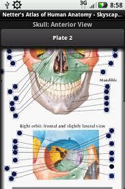 Netter Atlas Of Human Anatomy Online Netter U0027s Atlas Of Human Anatomy App Comes To Life On The Android