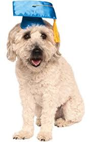 dog graduation cap graduation hat for dogs and cats medium 12 15