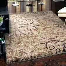 10 By 12 Area Rugs 10 X 12 Area Rugs 10 X 12 White Rug Goldenbridges 10 X 12 Rugs 10