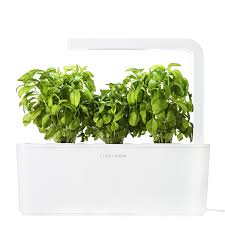 Raised Patio Planter by Planters Amazon Com