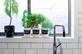 Window Sill Herb Garden Designs Kitchen Ideas Kitchen Window Ideas Kitchen Windows Over Sink