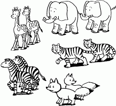 coloring page gorgeous animal color sheets zoo coloring pages 11
