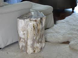 unique impression to the petrified wood side table home decorations