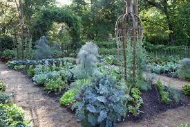 proactive fall vegetable garden cleanup with chanticleer u0027s david