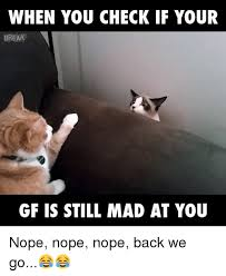 Mad At You Meme - 25 best memes about still mad at you still mad at you memes
