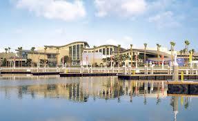 south coast plaza thanksgiving aquarium of the pacific shines a light on energy savings inside