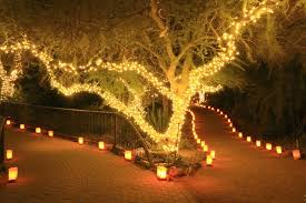 Solar Garden Tree Lights by Your Guide To Solar Rechargeable Fairy Lights Ebay