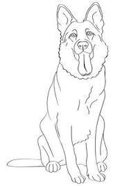dog and puppy coloring pages maltese dog puppy from hellokids com http www hellokids com