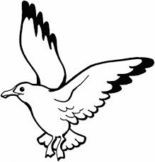 bird coloring pages bird birdcoloringpages nicecoloringpages org