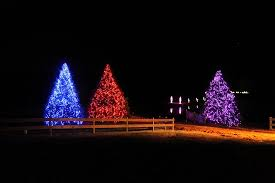lazy christmas lights christmas trees pumpkin united states lazy acres plantation llc