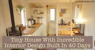 Pictures Of Small Homes Interior Tiny House With Interior Design Built In 40 Days Grid