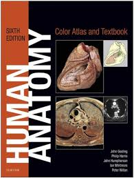 Anatomy And Physiology Pdf Free Download Human Anatomy Color Atlas And Textbook 6e 2017 Pdf Free Download