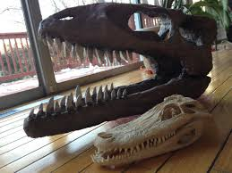 how to make a big dinosaur skull for very little money free
