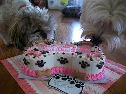 dog birthday cake recipes birthdays cakes ideas pet parties