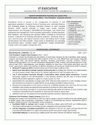 is resume paper necessary resume sample 1 it executive resume career resumes it executive resume sample 3 of 3