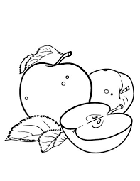 printable apple coloring page free pdf download at http