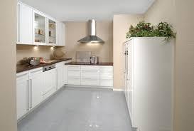 Kitchen Themes Ideas White Kitchens Theme Ideas