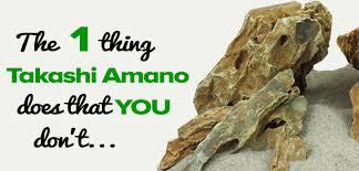 amano aquascape the 1 thing takashi amano does that you don t scapefu