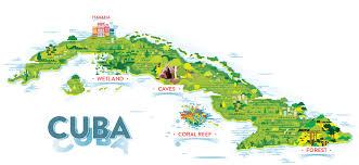 Hummingbird Map Cuban Wildlife Matching Game Ology Science For Kids