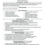 resume sales professional skills resume example 7 samples in