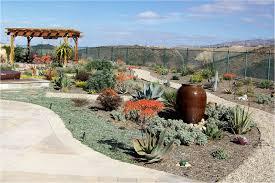 western material pea gravel fill sand drought tolerant