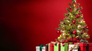 images about christmas trees on pinterest peacock tree and idolza