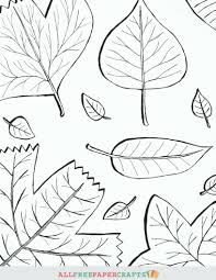 Thanksgiving Leaf Template Leaf Template Printable Free Contegri Com