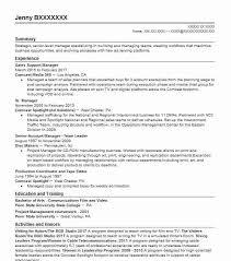 professional resume template accountant cv document sle editor resume sle editor resumes livecareer