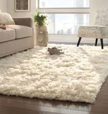 White Rugs Fluffy Area Rugs Envialette