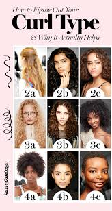 Hair Types how to figure out your curly hair type and why it actually helps