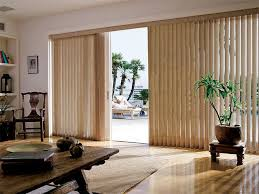 Patio Door Window Panels Blinds Remarkable Vertical Blinds For Sliding Glass Doors