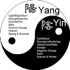 the yin the yang and the balance yin and yang is the guiding