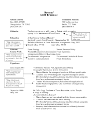 gis resume sample brilliant ideas of grocery manager resume for letter resume ideas sample best ideas of grocery manager resume about worksheet