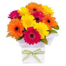 congratulations flowers congratulations flowers gifts flower delivery sydney
