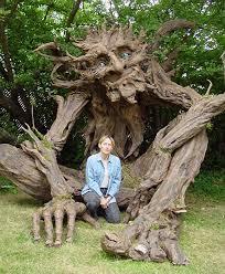 amazing tree facts the garden of eaden
