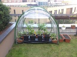culticave patio greenhouse self watering planter